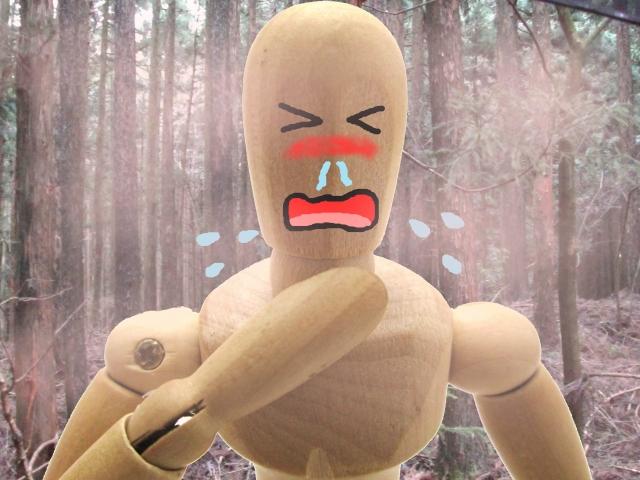 花粉症の目のかゆみだけには要注意!!花粉症歴約21年の恐怖体験!!