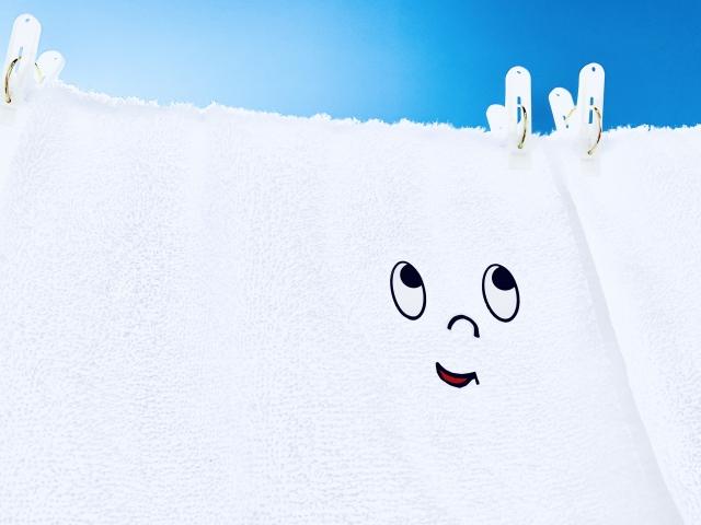 洗濯物に白いものが付着する!これってどうして?対策や取り方をご紹介